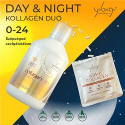 Yobogu Day and Night a megújulás kulcsa